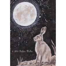 'Moon Gazing' - 003