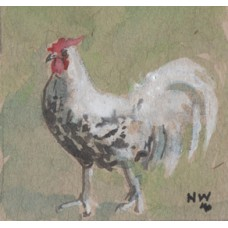 'Fine Fellow' Pecco the rooster